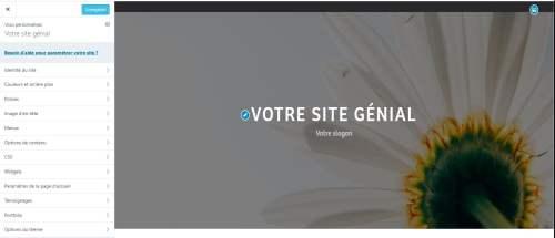 Design - Options Personnaliser - WordPress